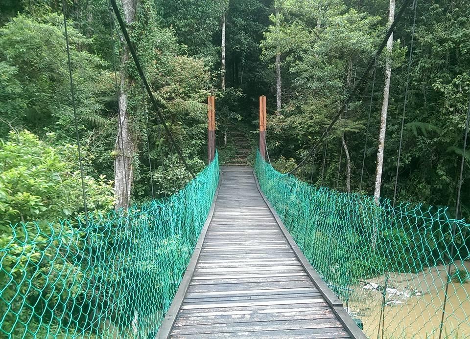 Malaysia Cameron Highlands solo female travel jungle trek