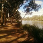 88 days rural farm work Australia second year visa