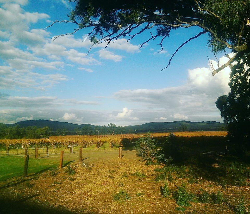 farmwork australia working holiday visa 88 days working hostel