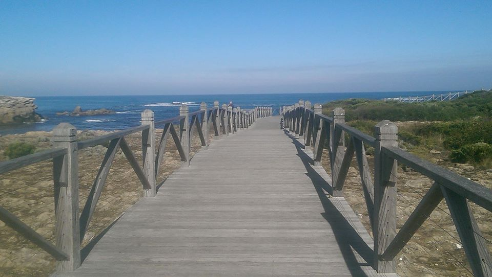 Warrnambool Great Ocean Road Without A Car
