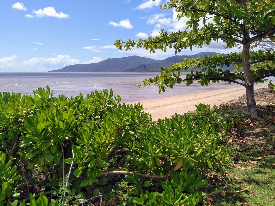 Cairns Daintree Rainforest Cape Tribulation Port Douglas Queensland Great Barrier Reef Australia solo female travel