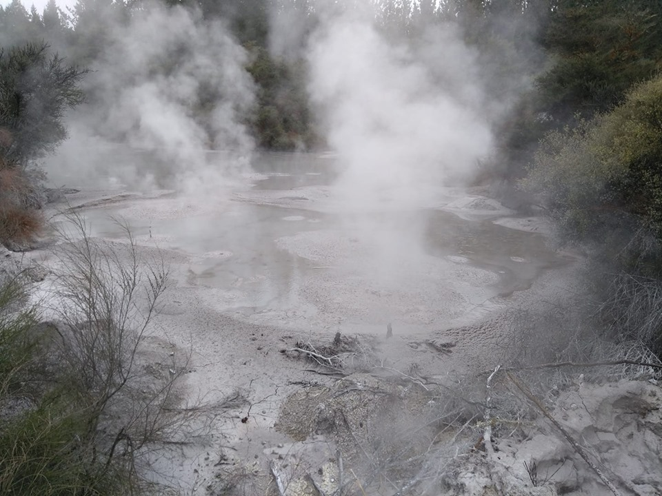 Mud pool Wai O Tapu Thermal Wonderland Rotorua volcanoes New Zealand North Island