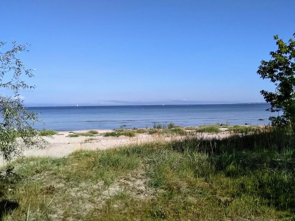 The beach and sea at Kadriorg