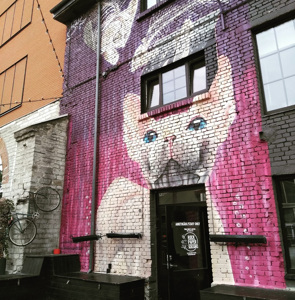 Street art of a cat on a purple and pink background on a shop front in Telliskivi Creative City in the Kalamaja district of Tallinn